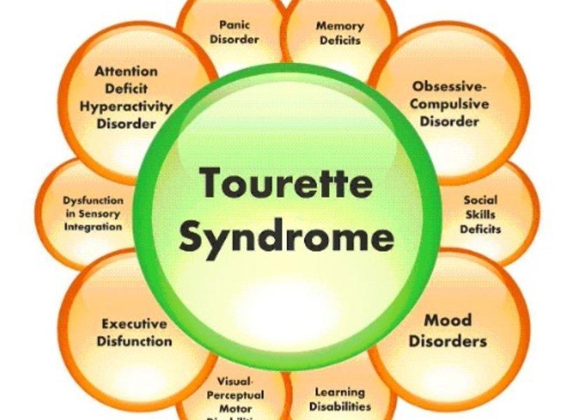 tourette syndromes description and analysis