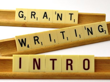 30 min Grant writing Consultant
