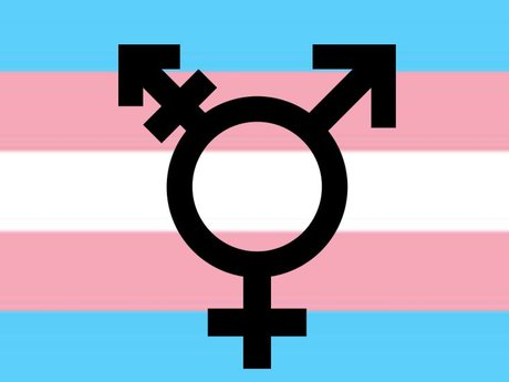 Ama about Transgender issues