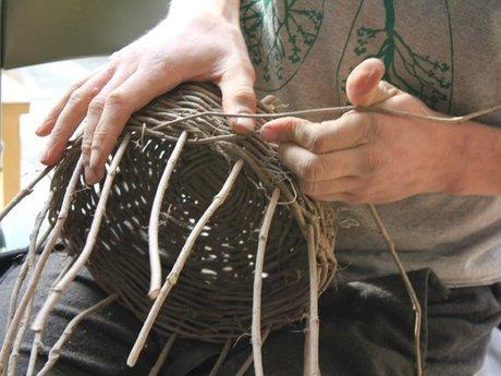 Ancestral Skills & Survival Lessons