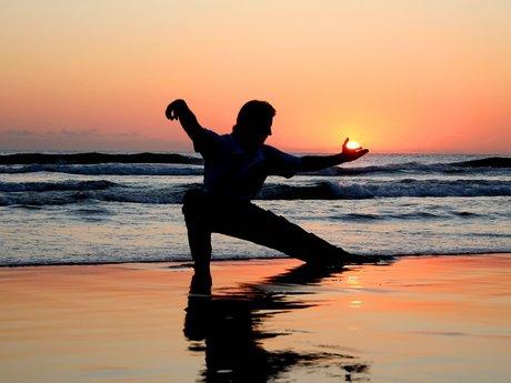 Martial Arts Tutor/Sparring Partner
