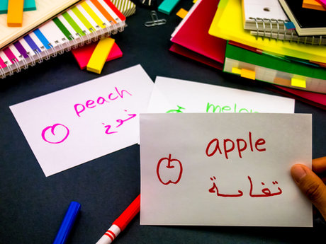 Science & Arabic Language tutoring