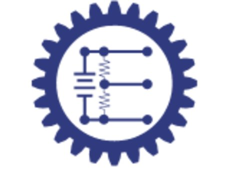 Electronics & IT consulting