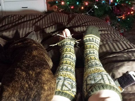 Beginning Knitting/Crochet