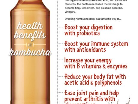 Kombucha Brewing Consultation Pkg