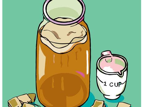 Kombucha Tea SCOBY