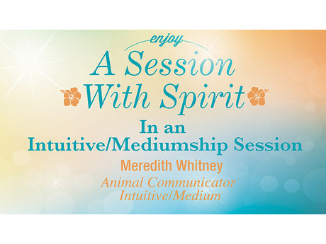 Mediumship/Intuitive Sessions