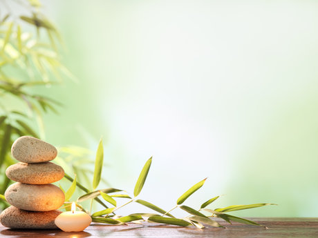Holistic wellness expertise