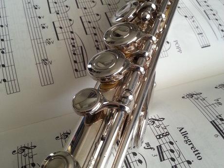 Beginner Flute Lesson