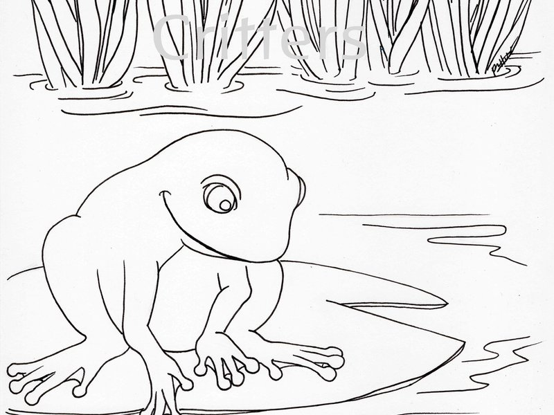 PDF Of My Original Animal Coloring Pages 10 Different Families To Have Fun As It Is A You Can Print Off Many Times