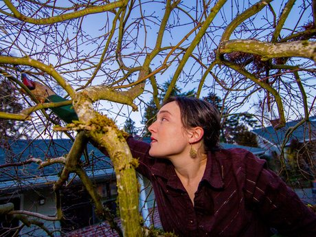 Pruning - Ornamental and Fruit