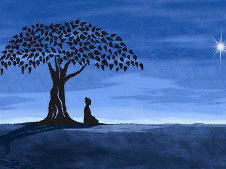 Meditation Coach