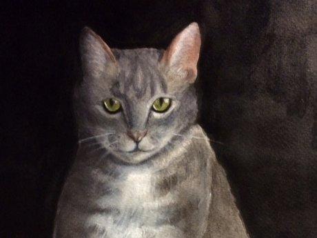 Pet portrait 6x8 watercolor