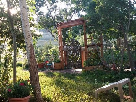 Holistic gardening help