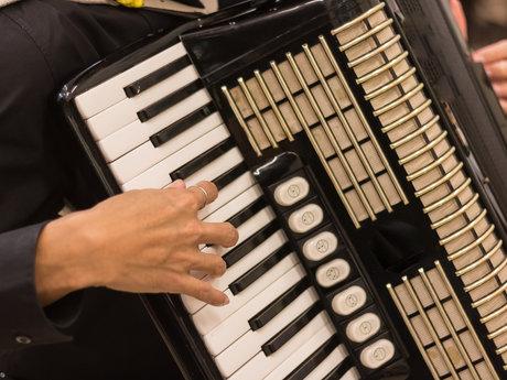 Surprise Accordion-gram Serenade