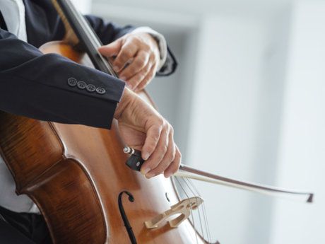 Cello lessons beginning to advanced