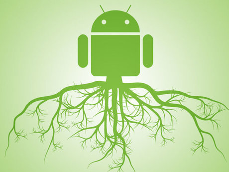 Root or Jailbreak your cell phone