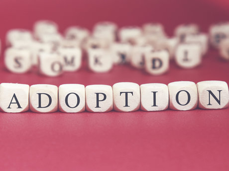 Adoption Coaching