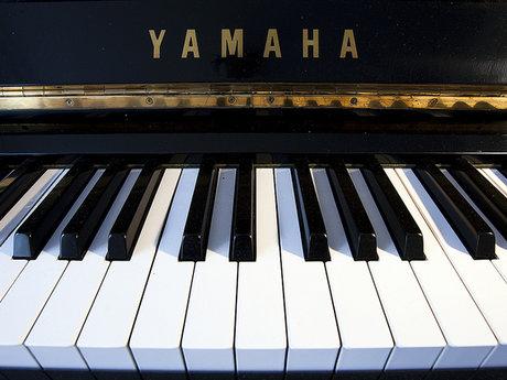 30 minute piano lesson