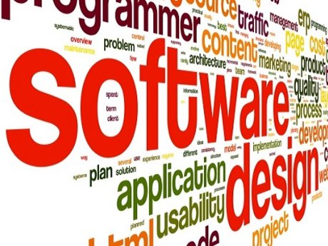 Software Development Consultation
