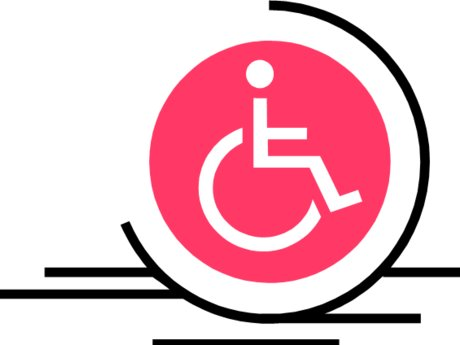 Disability Consulting