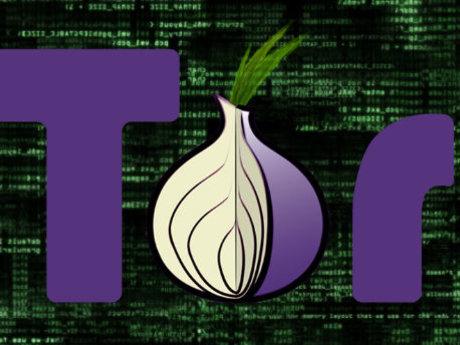 Tor Network Website Hosting