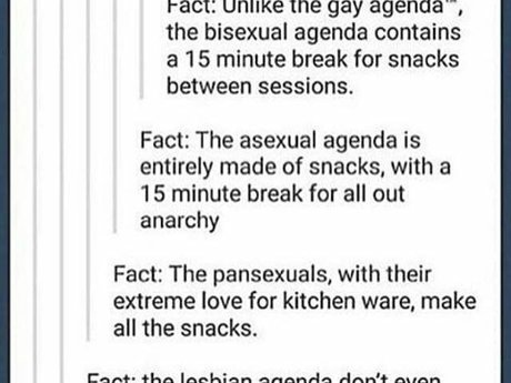 Ask a pansexual