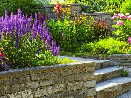 Living Landscaping Garden Service