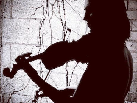 Violin Lessons All Levels & Styles