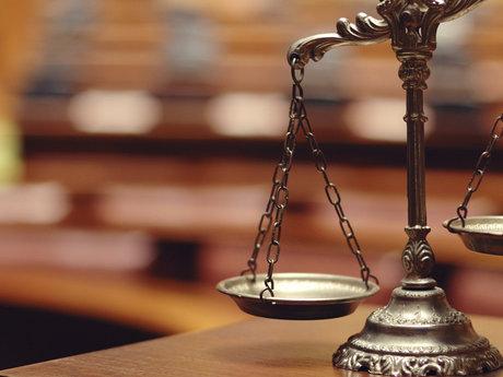 Lawyer (Bird Law)