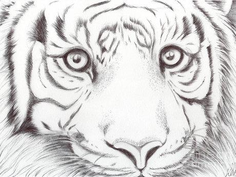 Art by TAbitha