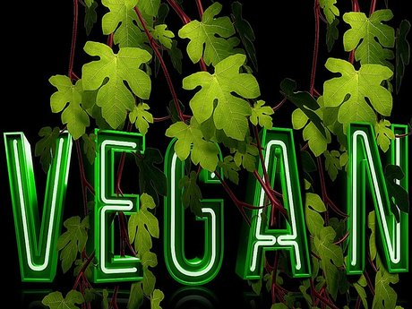 I can help you go Vegan!