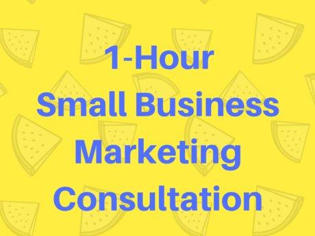 Small Biz Marketing Consultation