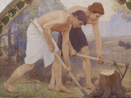 Moderate Manual Labor