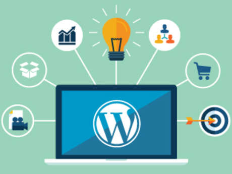 Advanced WordPress Development