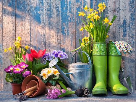 Horticulture Consultant