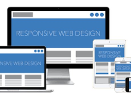 Build reponsive Website (Database)