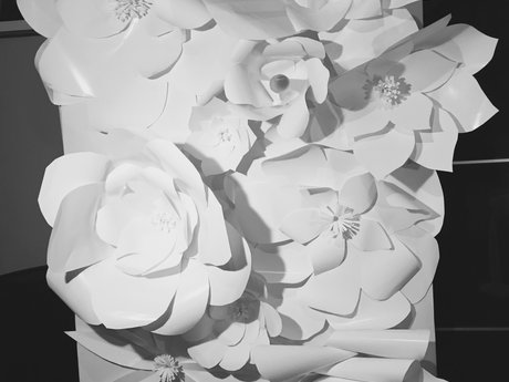 Giant paper flower walls for events
