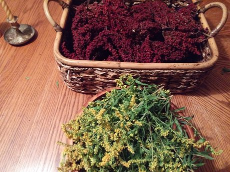 30 minute Wise Woman Herbal Consult