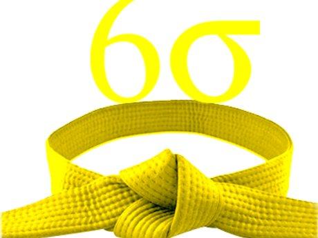 Lean/Six Sigma yellow belt certify