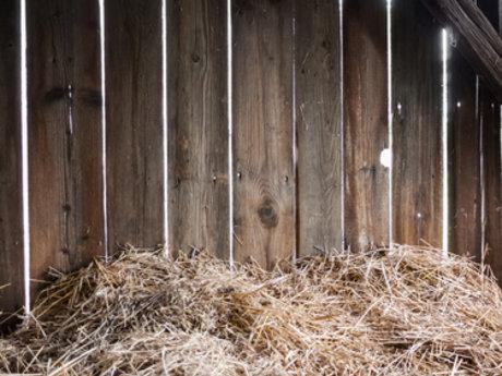 Barn work