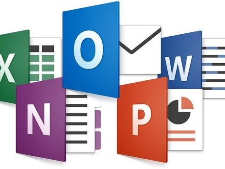 Microsoft Word & Excel Training