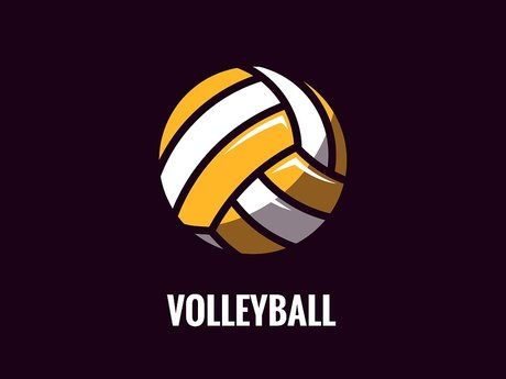 Virtual assistant volleyball coach