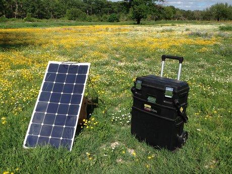 Solar & Renewable Energy Consultant
