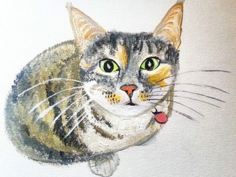 Animal Portraits in Acrylic