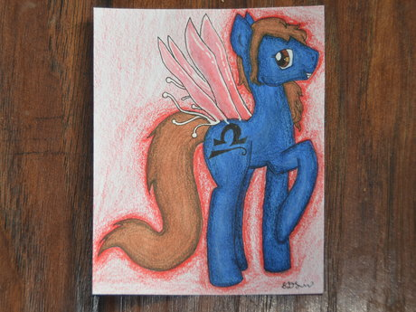 Pony Original Character!