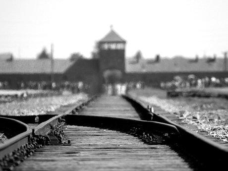 Recommend a Holocaust Memoir