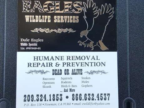 Wildlife problem solver