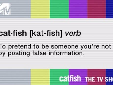 Catfish Detective