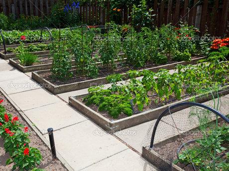 Support Urban/Suburban Gardening!